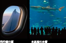 飛行機の窓/水族館の水槽
